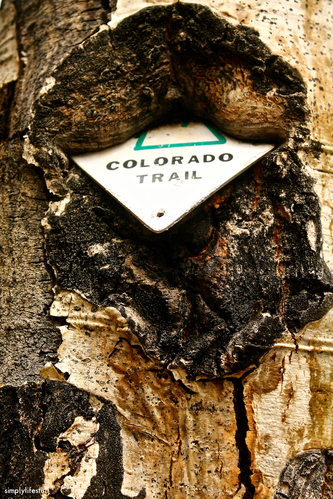 Hiked numerous portions of the Appalachian Trail and now working on the Colorado Trail.